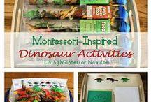 Montessori Unit Studies / by Barbara Allyn