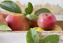 Apple Recipes Ѽ / by Susan Moore