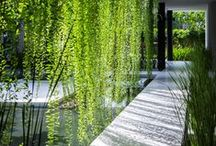 Outdoor Spaces / The calm and fresh outdoors