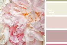 Paint / Paint colours