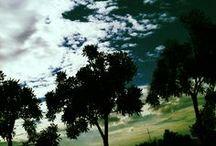 Cloud / by ฤทัยรัช จันทร์เพ็ญ