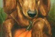 Dachshund...My favorite dog...!!!