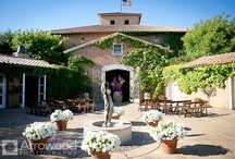Viansa Winery / Weddings at Viansa Winery. Wine Country Weddings. All photos © 2015 Arrowood Photography. http://www.arrowoodphotography.com