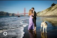 Golden Gate Bridge Photography: Weddings, Engagement, Lifestyle. San Francisco, California / The iconic Golden Gate Bridge is synonymous with the city San Francisco. And that's why it makes a perfect backdrop to many engagement, wedding and lifestyle photographs. This board is a collection of many different shoots featuring our couples and families during their photo sessions with the Golden Gate Bridge in the background.