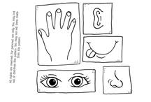 Science: Senses, sensory bins & I spy