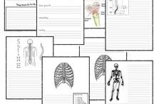 Health and anatomy: Kropp, mat och hälsa  / by Lisa