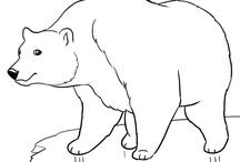Geography- Antarktis, Alaska och arktis (Antarctica and the Artic zone) / by Lisa