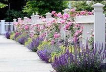 Gardens: Flowers, Grasses, Bushes, Walkways, Seating, Gates, Decorative Planters / by Lisa