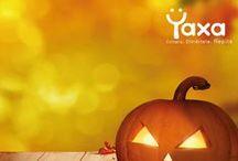 Yaxalloween / Diviértete con Yaxa en este Yaxalloween #Yaxalloween #Halloween