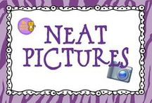 Wild About Neat Pictures / Great pictures for writing ideas!