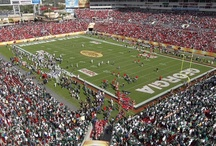 Raymond James Stadium / by Outback Bowl