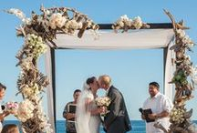 Casual Elegance Beach Wedding by Amy Abbott Events / Heather and Matt live in Colorado, so they decided to get away from the cold all and marry in sunny San Jose del Cabo, Baja Sur, Mexico. For the wedding they chose the beautiful Campestre Beach Club where they married on the sand in front of the Sea of Cortez amid breaching whales and jumping Manta Rays. Heather's idea of a perfect wedding was a whimsical, yet elegant event, where everyone felt comfortable. Alison White Photography & Pina Hernandez Floral. Featured on Style Me Pretty.