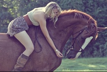 Horses / ~It's impossible to hate these creatures~
