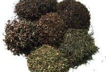 Nepal Teas / #loosetea  #nepal wholesale and retail from http://www.svtea.com