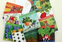 Seed Packet Designs / by Margaret Briggs
