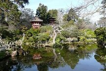 Tea Gardens / A Japanese tea garden (cha-niwa or roji) is a place for quiet reflection on the beauty of nature and the art of living in harmony with one another and with all things. #teagarden images http://www.svtea.com/
