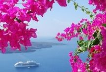 Beautiful Greece / Wat is Griekenland toch mooi! In Europa krijg ik van Griekenland altijd het meest een vakantiegevoel. Dat andere alfabet alleen al. Heb al veel Griekse eilanden bezocht. Wat wordt mijn volgende...? Een pinbord ter inspiratie.