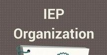 IEP meeting and 504 tips for parents / Everything parents need for IEP meetings and special education, and 504s. Includes autism, executive functioning, learning disabilities, dyslexia, visual impairments and more.