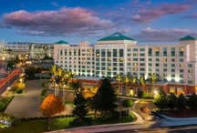 Stay at Hotels / Santa Clara, CA offers 3,800 hotel rooms including Avatar Hotel, Biltmore Hotel & Suites, Embassy Suites, Hilton Santa Clara, Hyatt house, Hyatt Regency Santa Clara, Marriott Santa Clara, & The Plaza Suites. / by Visit Santa Clara