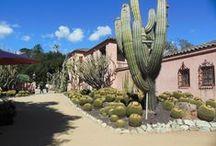 Santa Barbara Homes & Gardens