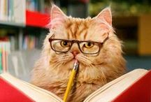 {The Literary} Cat / by Gibbs Smith Books