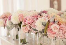 Wedding Planning / by Ericka Pratt