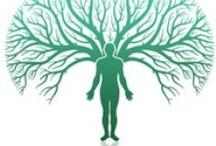 Genealogy | Family Trees 2