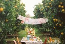 backyard wedding splendor.... / If you're on a budget--and who isn't--a backyard wedding can be unforgettable!  Skip the event space and you'll have more to invest in food, booze, and decorations!