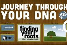 Genealogy:  DNA / Tips and helps on how DNA can help your genealogy research.