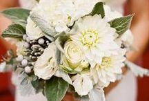 Weddings / by Christine Loo