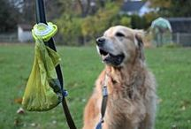 The Fifth Paw Raves / #TheFifthPaw is a cool #leash attachment that lets you be Hands Free, #Doody Free, while #walking your #dog! No more juggling full bags of #poop. Holds multiple #Poopbags. Stays Clean & Tangle free! #MadeintheUSA! www.thefifthpaw.com