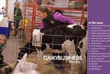 DairyBusiness Weekly / by HolsteinWorld DairyBusiness
