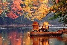 fall / my favorite seasons