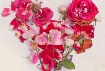 Beautiful Bouquets  / by Grace Davis