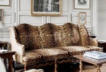 Leopard / by Grace Davis