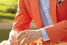The Well Dressed Man / Business and Casual Looks for Men