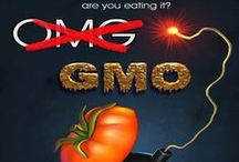 GMO's & Monsanto / The protest against Genetically Modified Organisms (GMO's) and Monsanto - and the case for natural, organic paleo foods!