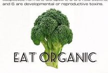 Eat organic! / How much of your paleo food is organic? / by The Paleo Network