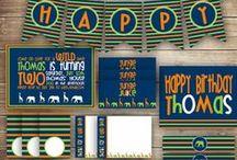 Safari / Jungle / Zoo Birthday Party