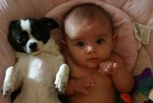 Babies, Puppies, and Other Cuties / by Marla Crawford