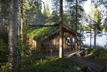 My Log Cabin / by Christy B