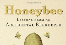 Bees and Keys / by Paula Toynbee