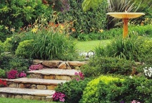 My Home - Outside Spaces and Gardens / by Winnipeg Girl