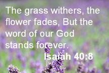 """† Old Testament...God's Word...Endures Forever † / Isaiah 40:8..... """"The grass withers, the flower fades, But the Word of our God stands forever."""" / by Linda Kullman"""