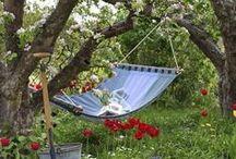 Garden Inspiration / Ideas for the garden.