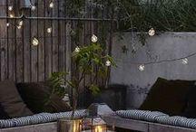 Outdoor Lighting / Ideas for garden lighting.