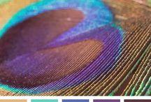 .Color Board. / by Tanya May