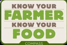 FACS - Nutrition/Food / by Beth  Walton FACS Teacher