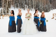 Winter Wedding Accessories & Ideas / Ideas for Accessories and Decor for your elegant Winter Wedding! Visit us at www.affordableelegancebridal.com for elegant, affordable bridal and prom accessories!
