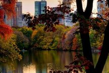 Central Park NYC / The beauty and mystery of this iconic place in the heart of NYC